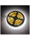 Светодиодная лента SMD5050 72LED/метр негерметичная IP20 (5 м)